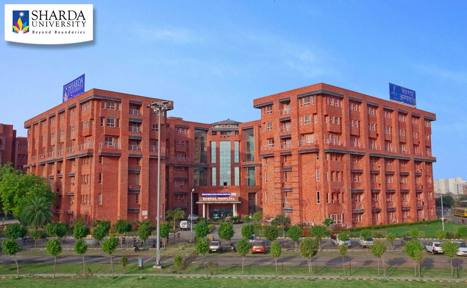 School Of Creative Arts Design And Media Studies Sharda University Greater Noida Courses Fees Placements Ranking Admission 2020