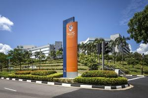 Study In Singapore For Indian Students Colleges Cost Visa Scholarships Requirement