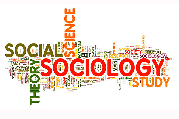 popular undergraduate social science courses to study abroad