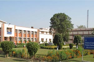 Y s r agriculture university
