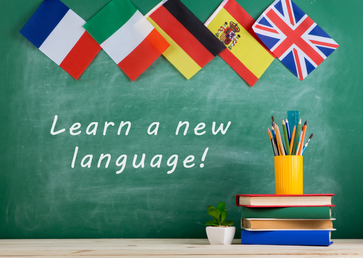 Colleges offering Foreign Language Courses in India